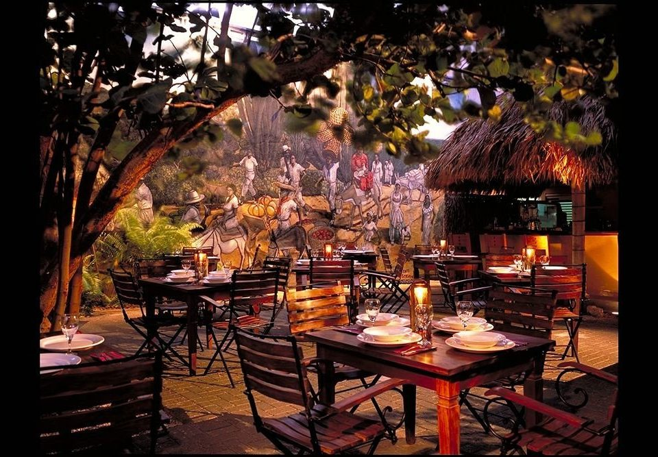 Bar Dining Drink Eat Exterior Nightlife Romantic tree restaurant lighting set