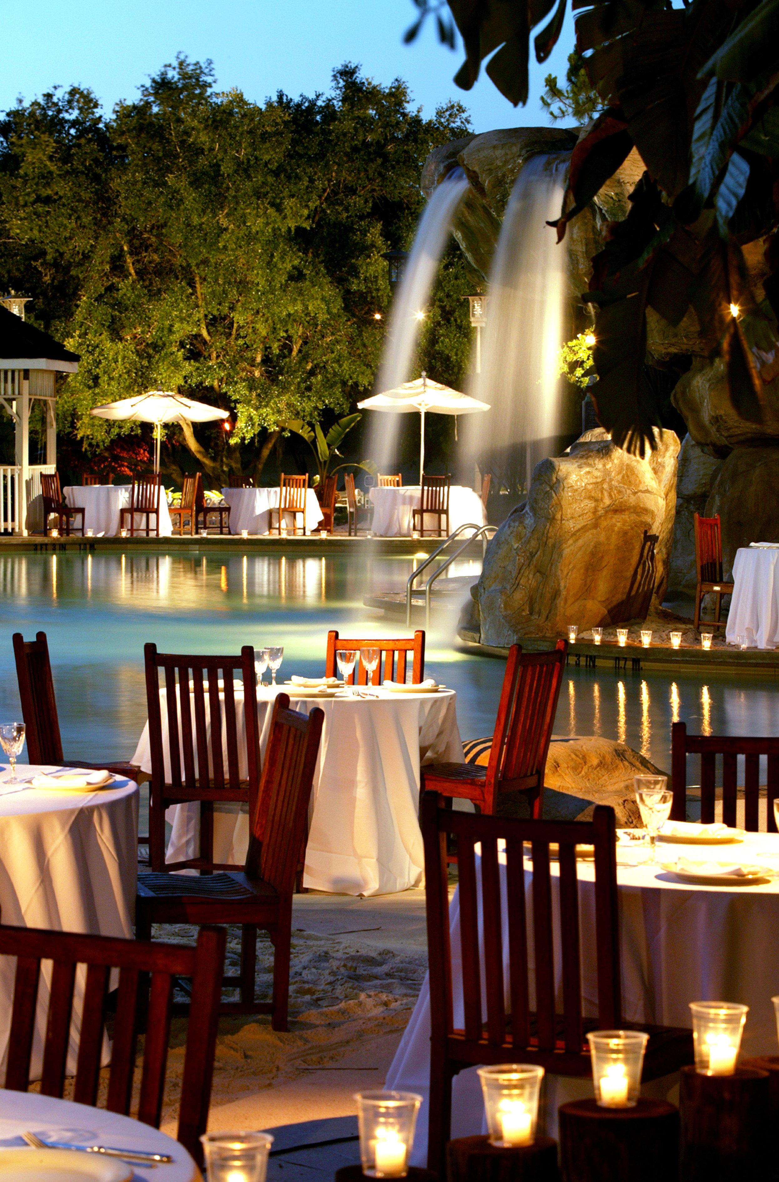 Bar Dining Drink Eat Elegant tree chair restaurant Resort set dining table