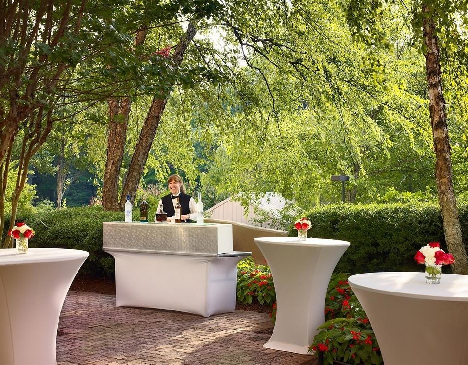 Bar Dining Drink Eat Elegant tree backyard flower Garden yard home plant spring lawn