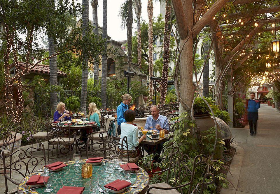 Bar Dining Drink Eat Elegant Fitness tree neighbourhood flower Garden