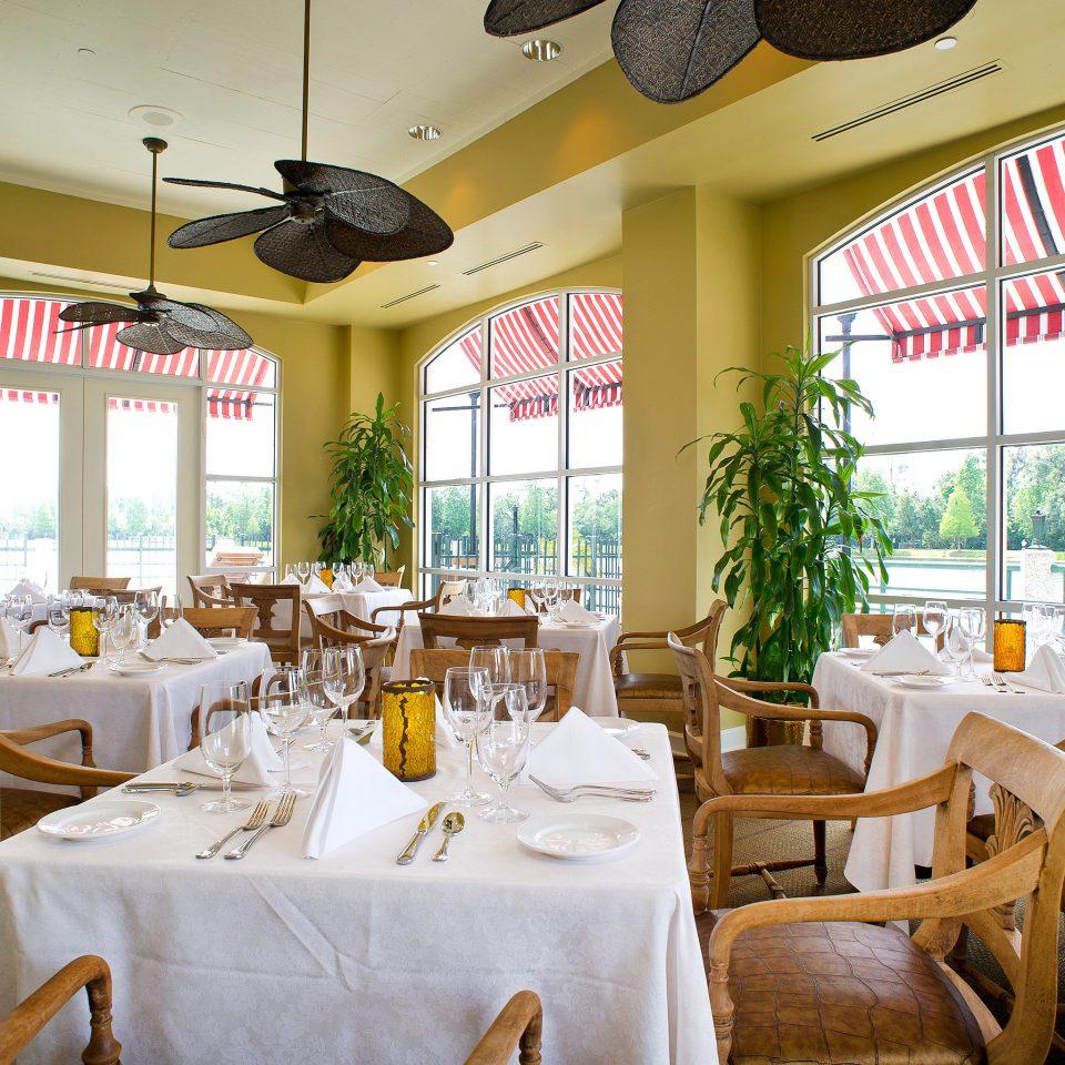 Bar Dining Drink Eat Elegant chair restaurant function hall Resort
