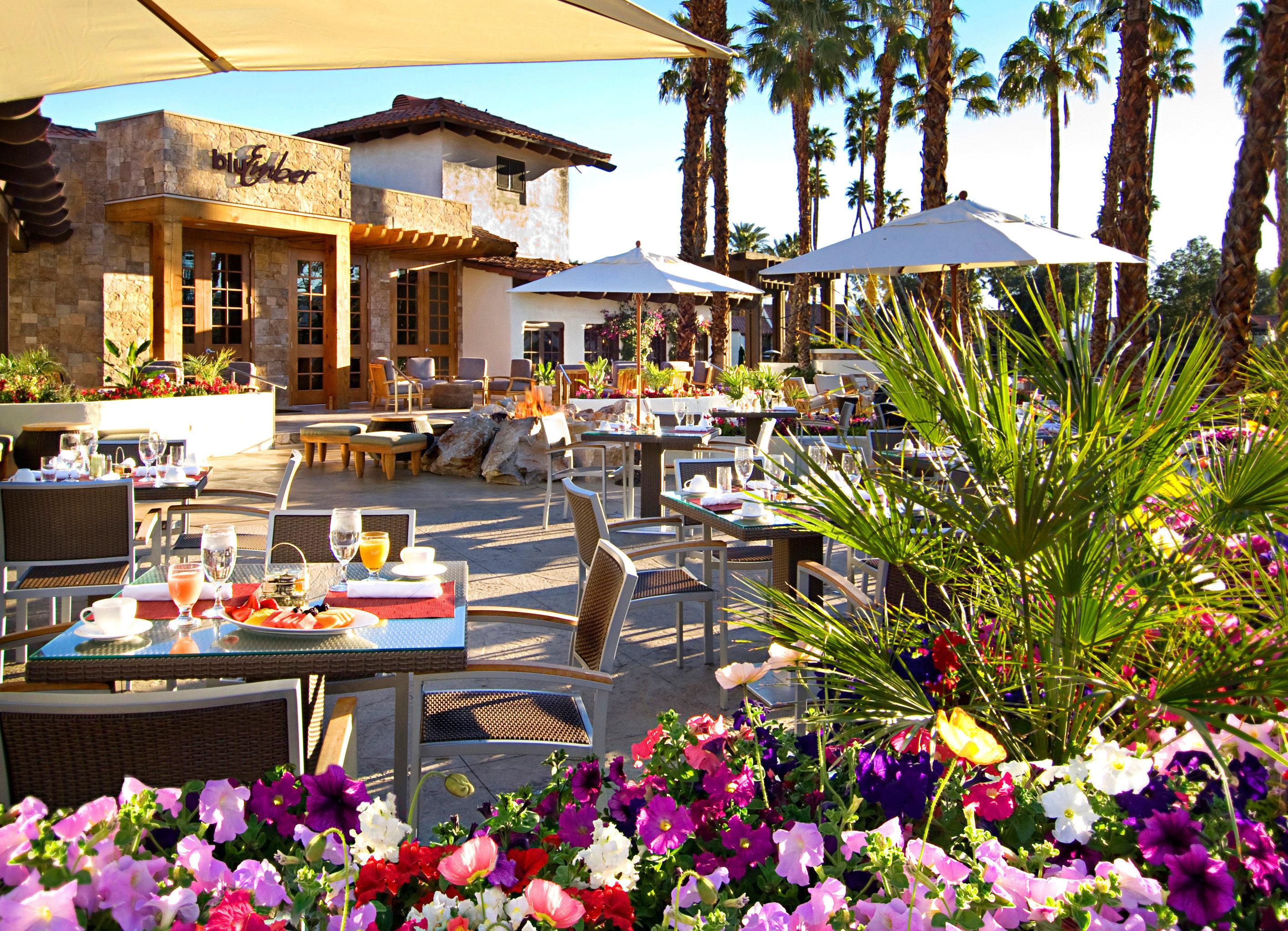 Bar Dining Drink Eat flower Resort floristry plant restaurant colorful Garden surrounded