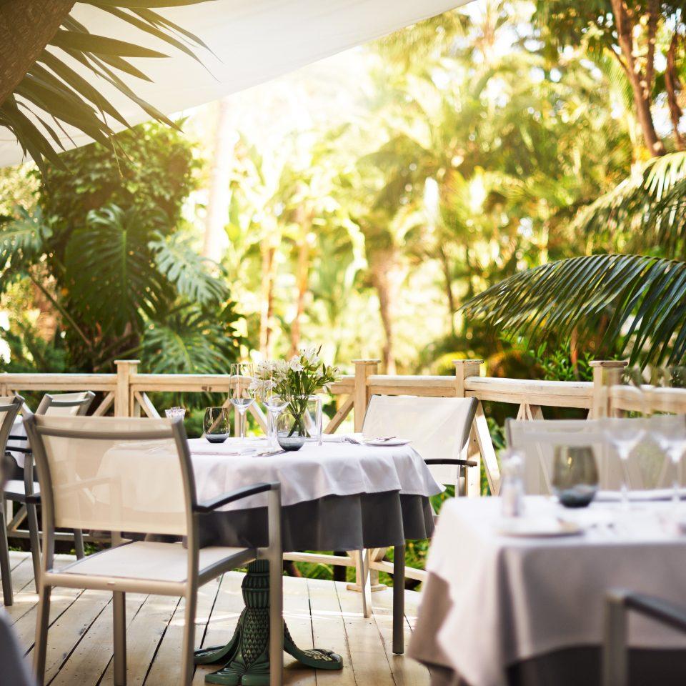 Bar Dining Drink Eat Hip Luxury Modern tree restaurant chair function hall Resort wedding rehearsal dinner wedding reception plant dining table