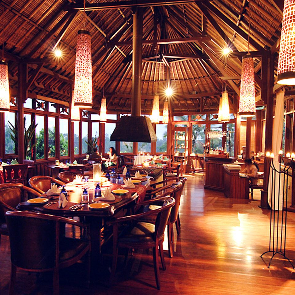 Dining Jungle Luxury restaurant Bar