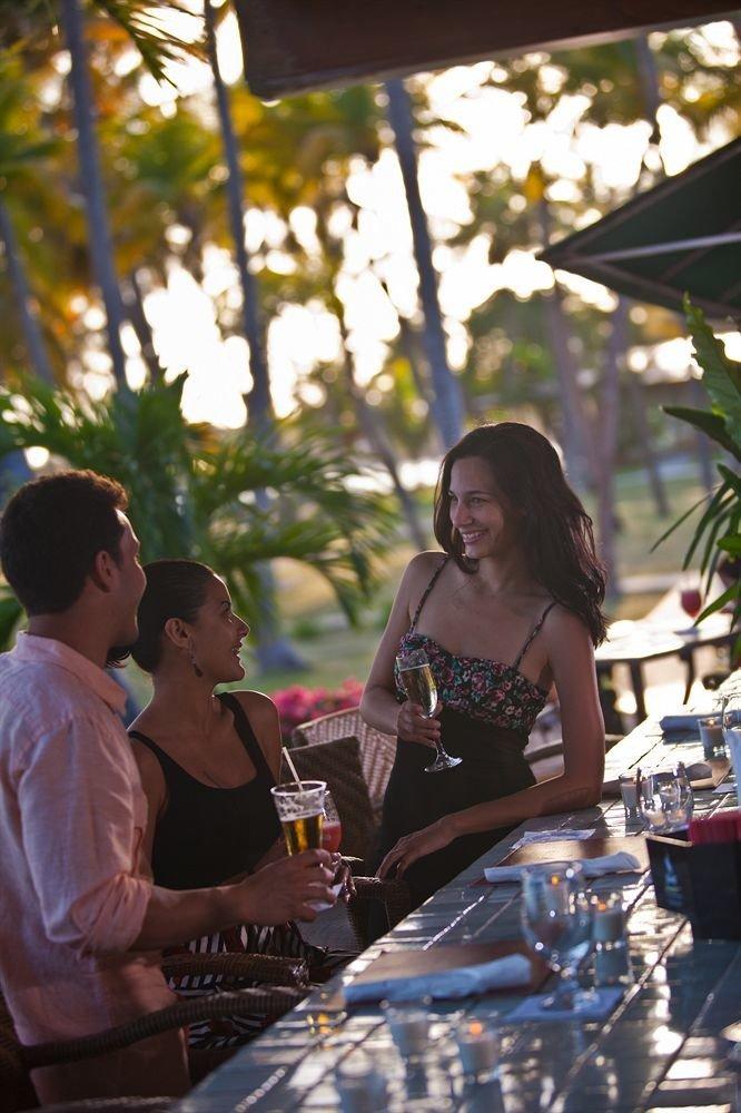 Bar Drink Nightlife Resort tree spring