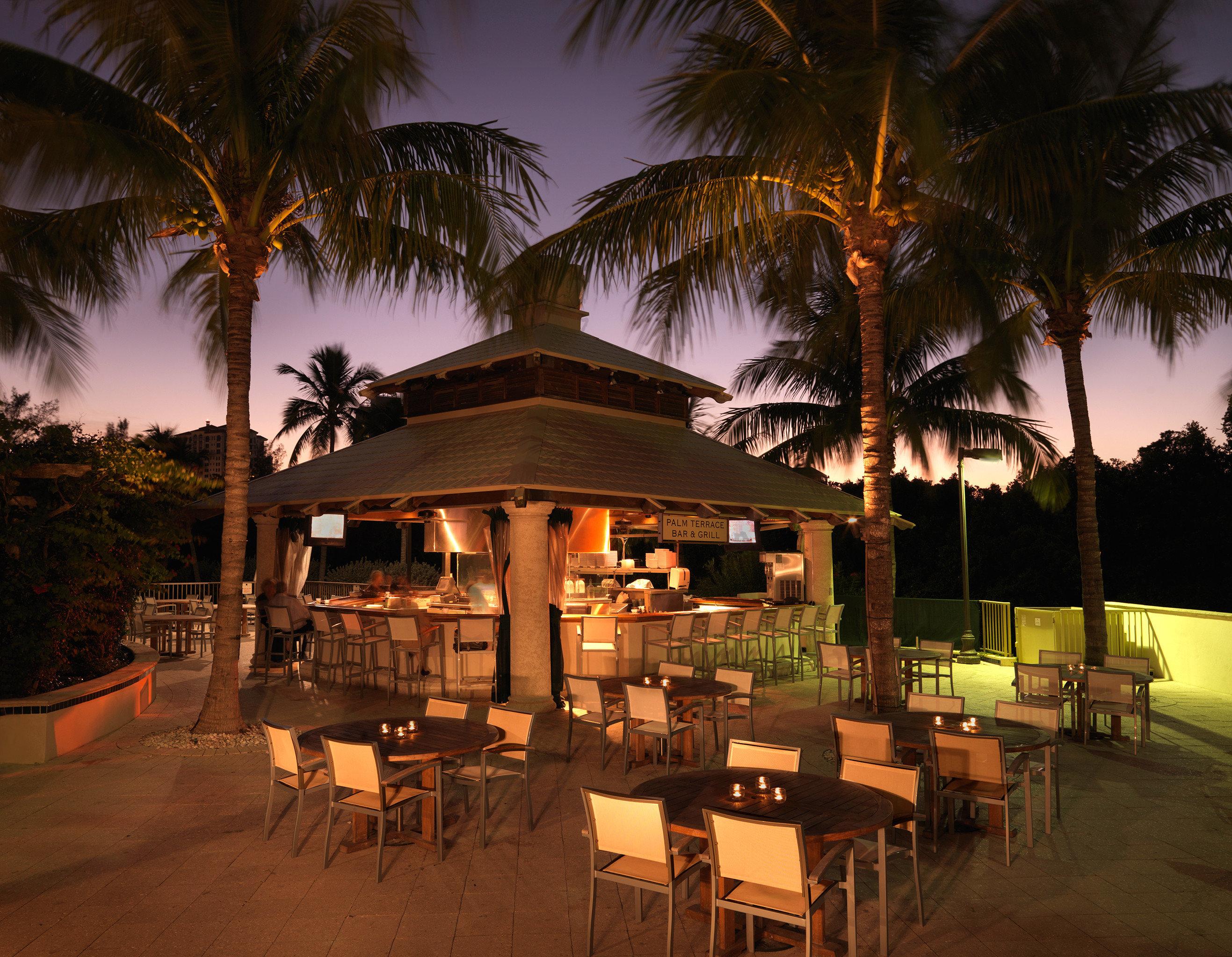Bar Drink Outdoors Sunset Waterfront tree palm Resort restaurant night arecales evening hacienda Villa lined