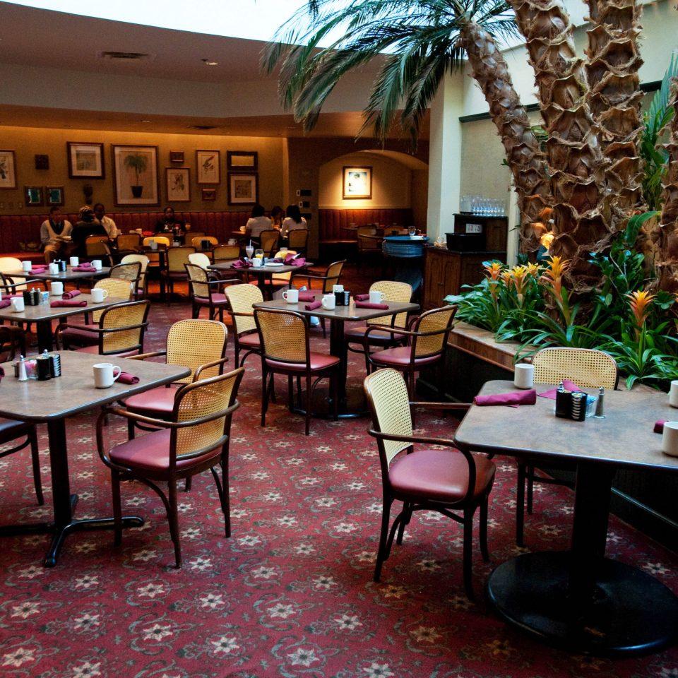 chair restaurant Resort Bar