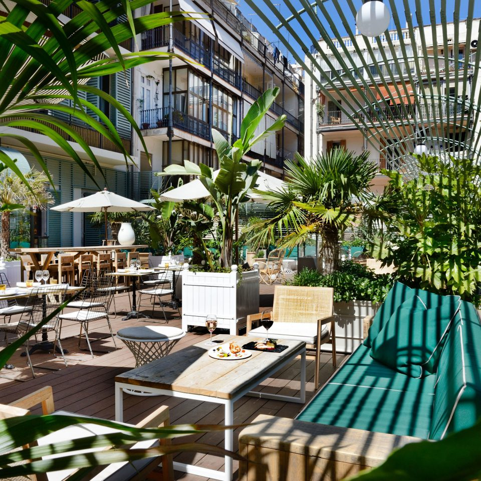 Barcelona Hotels Spain Trip Ideas tree plant chair Dining Resort green backyard arecales Garden Courtyard home condominium Jungle outdoor structure yard tropics swimming pool palm family restaurant set