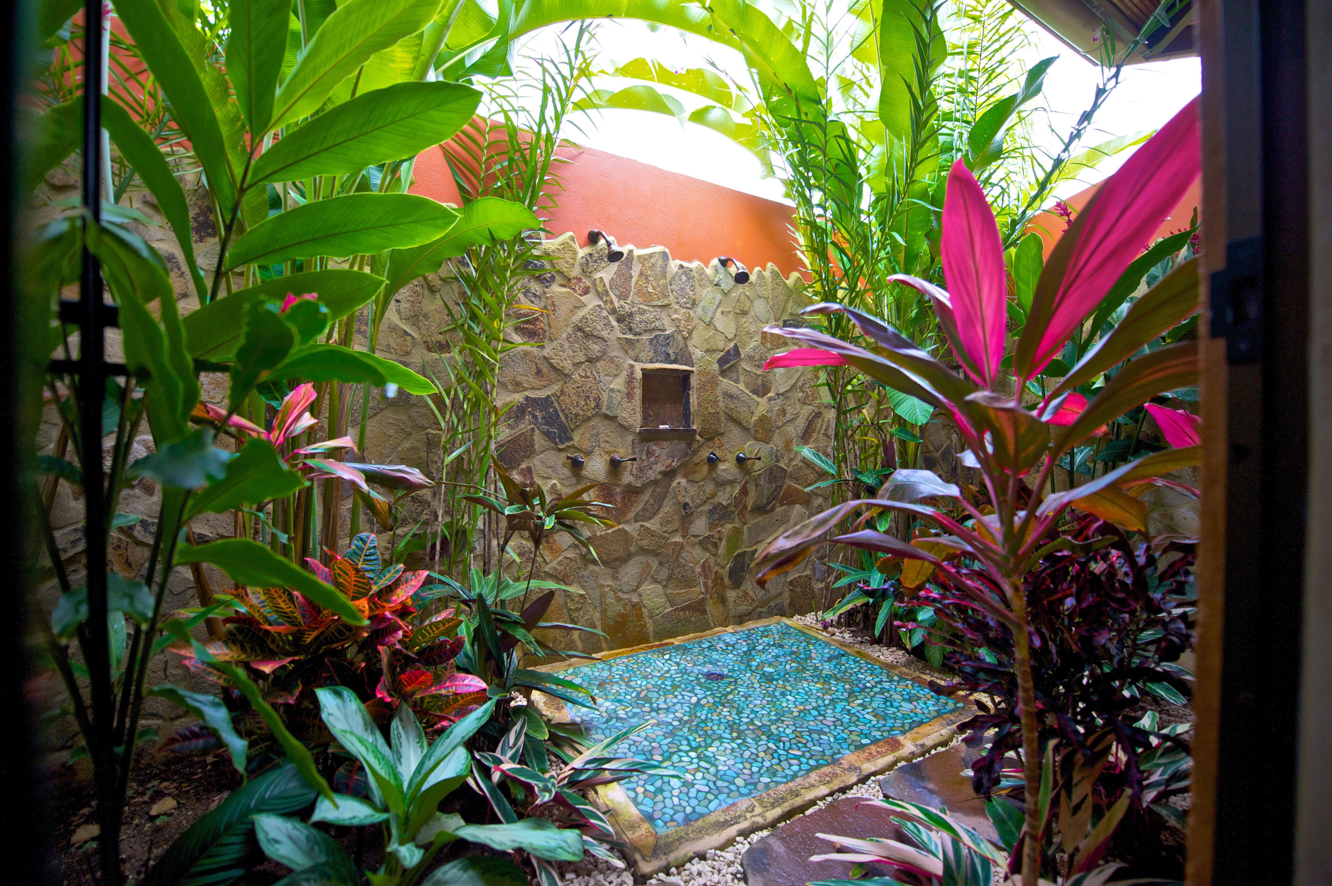 Bath Bedroom Country Eco Jungle Romantic Rustic Suite plant flower flora botany pot tropics Resort Garden palm