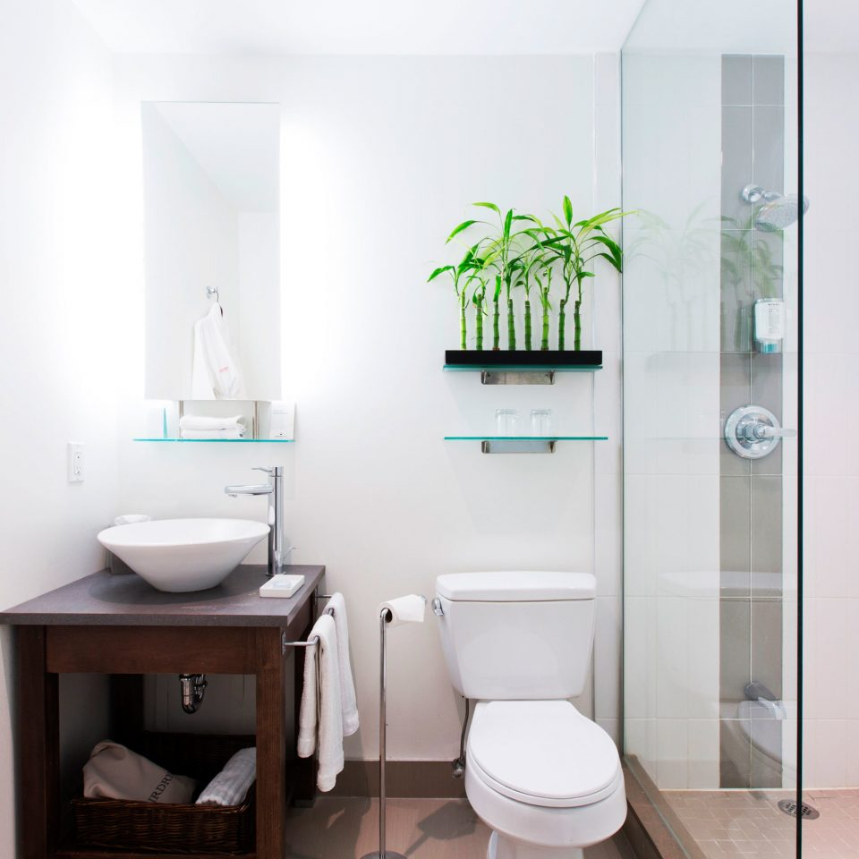 Bath City Modern toilet bathroom property plumbing fixture bidet
