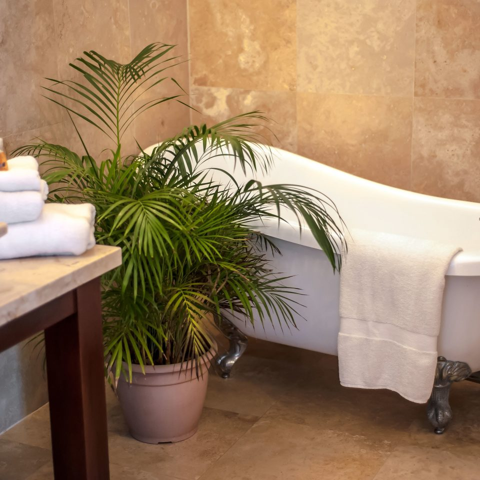 Bath Eco Island Rustic property bathroom Suite home bathtub swimming pool plant dining table