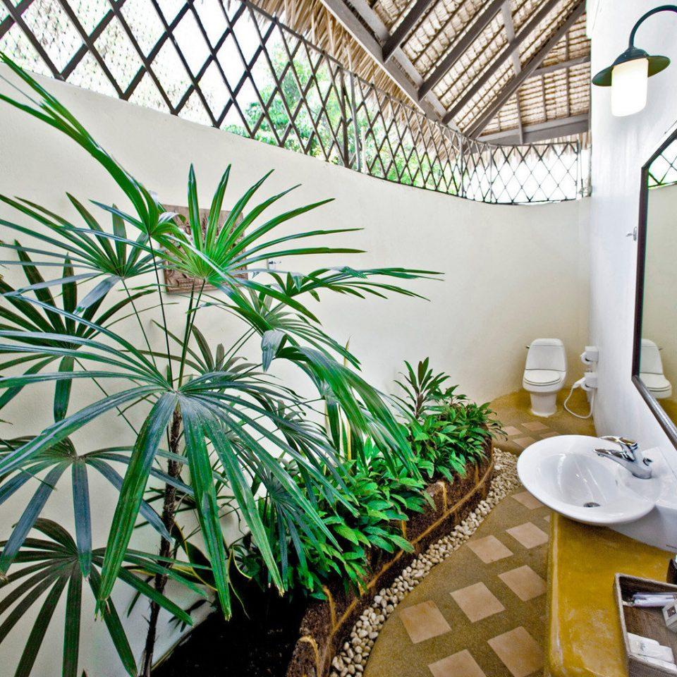 Bath Hip Island Tropical plant green property flora botany arecales home Garden palm family