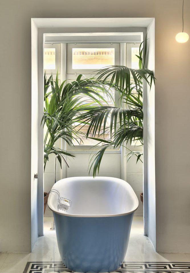 plant bathroom plumbing fixture bidet ceramic sink