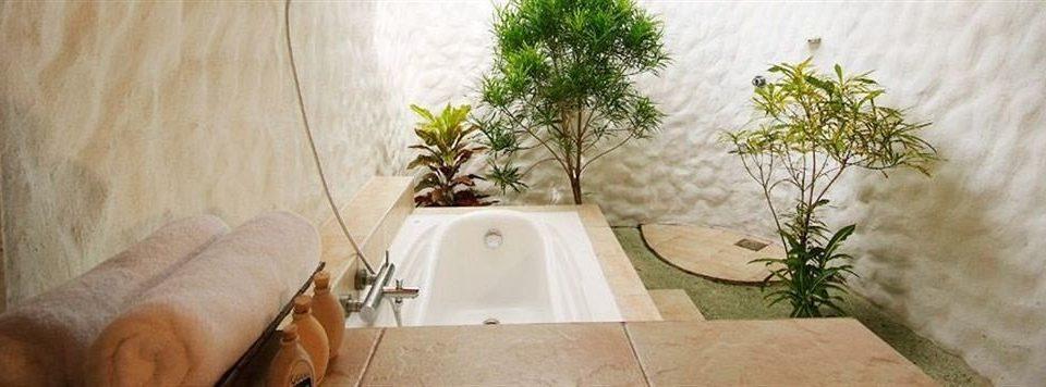property house home plant cottage bathroom