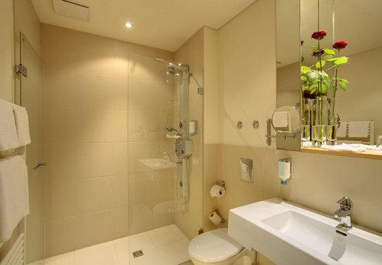 bathroom mirror sink property toilet light plumbing fixture rack