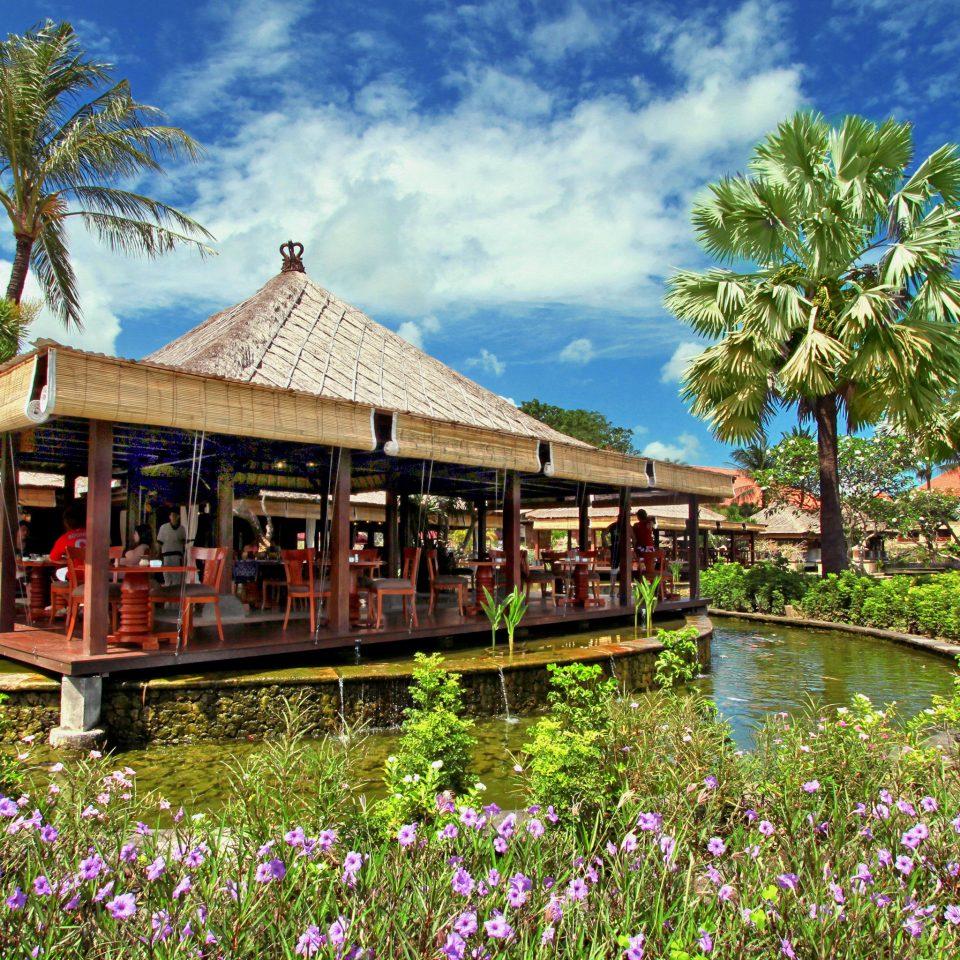 Beach Beachfront Boat Elegant Lounge Luxury Ocean tree grass sky Resort flower rural area Village Garden surrounded colorful