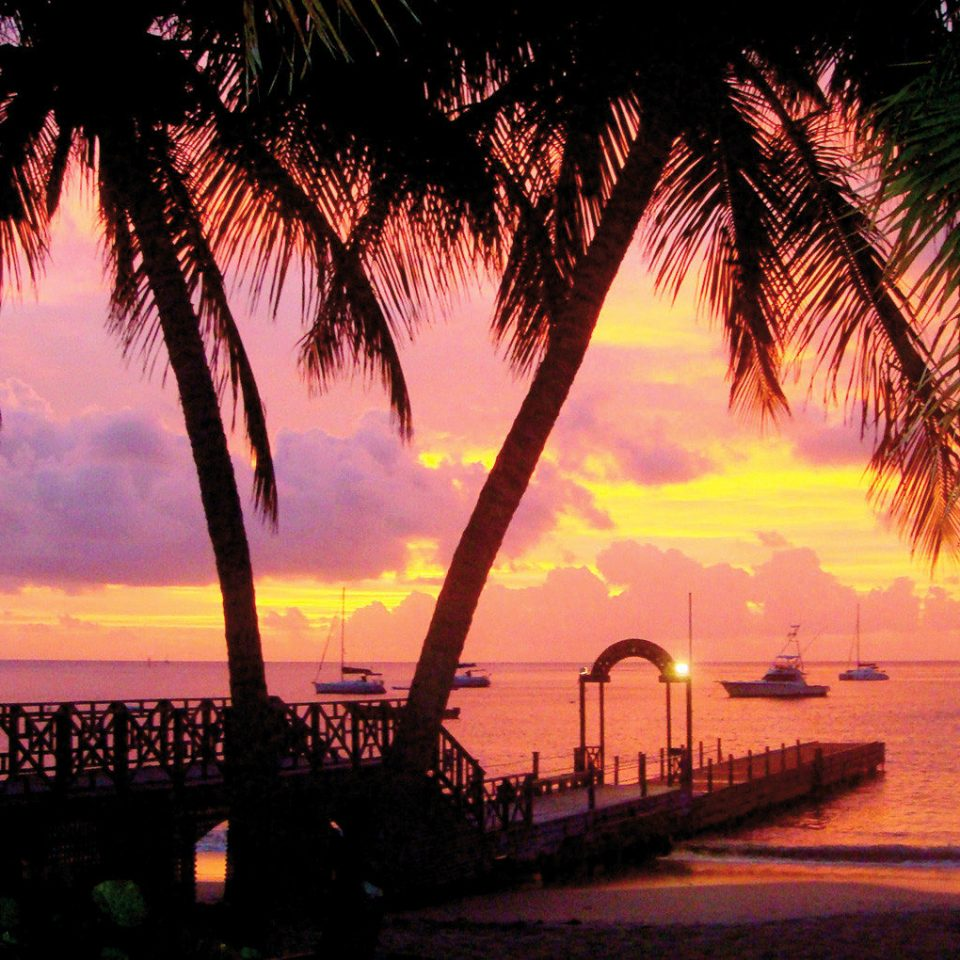 Beach Beachfront Boat Island Jungle Sunset Tropical tree water plant palm dusk arecales morning evening dawn sunrise setting sunlight palm family