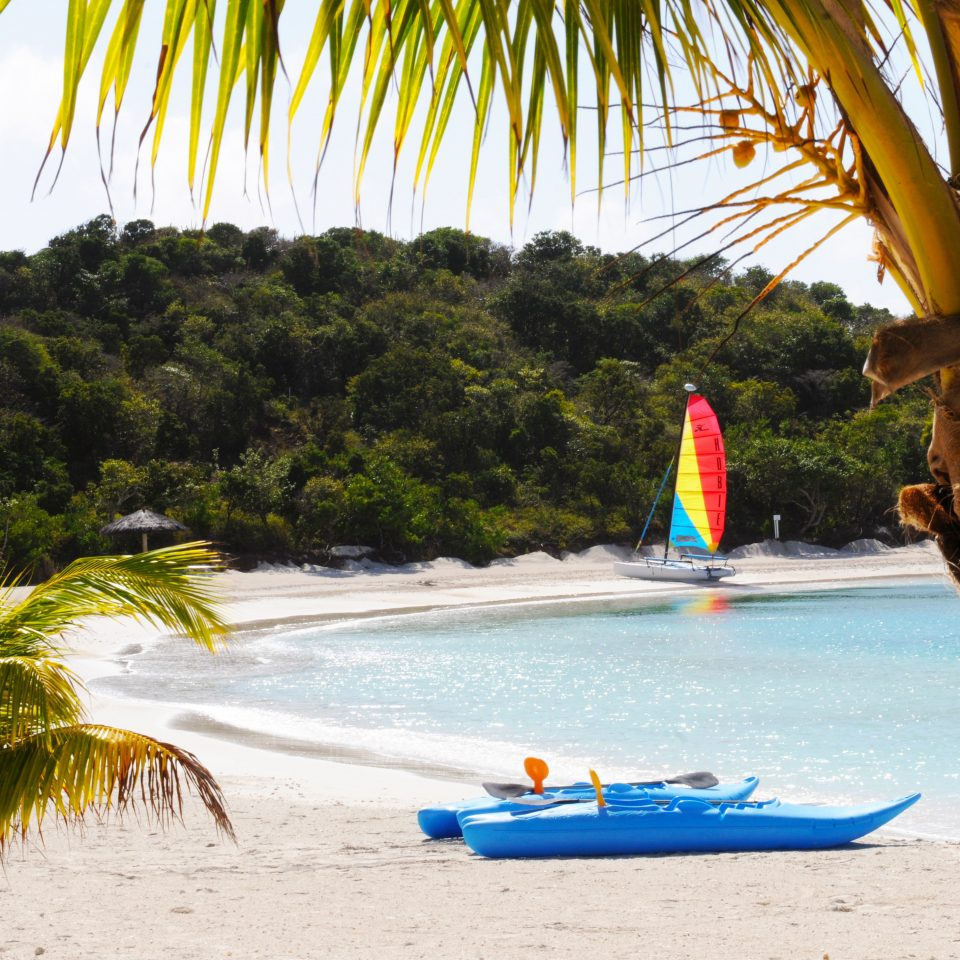 Beach Beachfront Boat Island Natural wonders Ocean Outdoor Activities Resort Scenic views Tropical tree water leisure palm arecales Sea tropics caribbean plant watercraft palm family sailing vessel shore sandy day