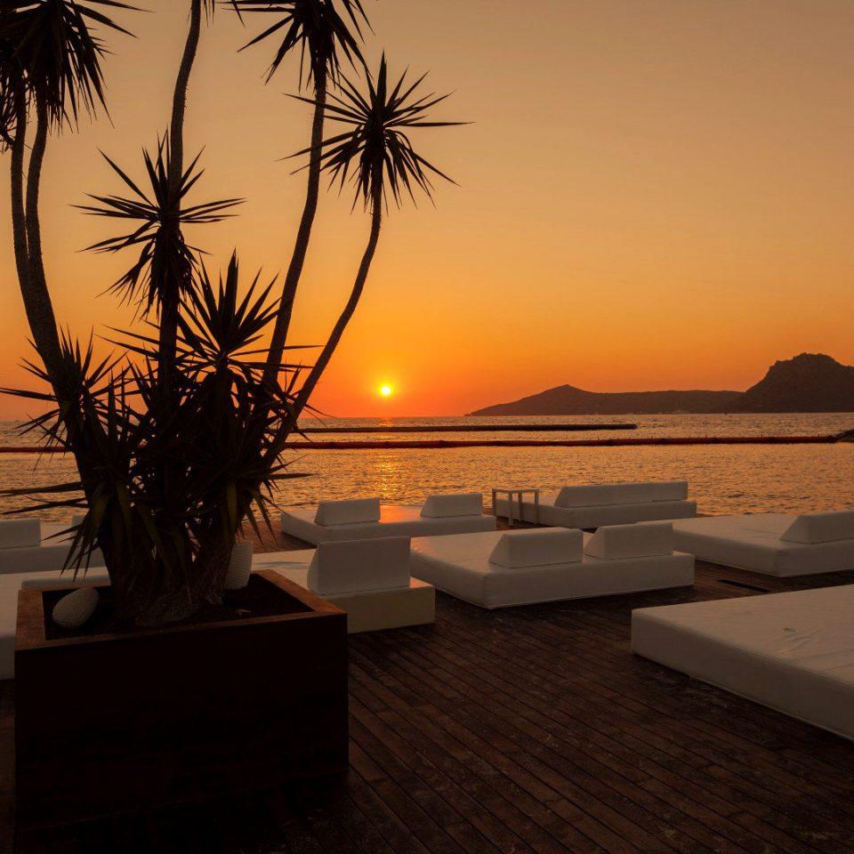 Beachfront Boutique Modern Suite Sunset sky water Sun Beach tree Ocean palm morning plant evening setting dusk Resort shore sandy