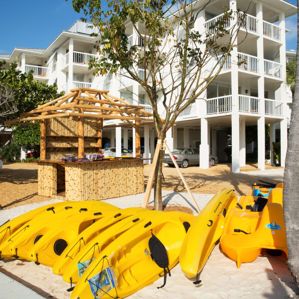 Beach Beachfront Resort tree yellow leisure Playground public space City outdoor play equipment