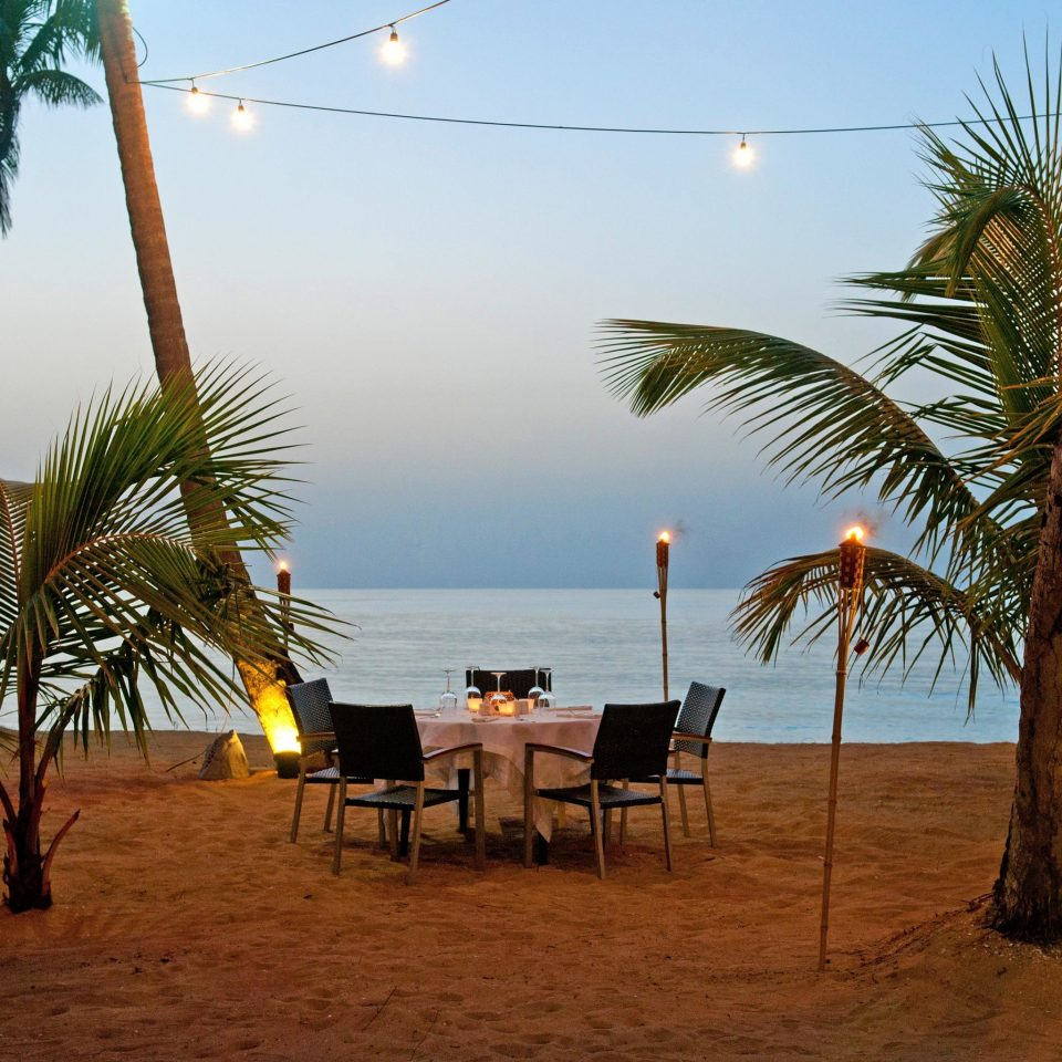 Beach Beachfront Classic Dining Drink Eat Grounds Resort Scenic views sky tree palm plant Ocean palm family arecales Sea tropics Coast caribbean shade sandy lined shore