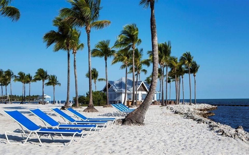 Beach Beachfront Ocean sky tree palm sandy shore Sea caribbean Resort Coast marina arecales Island dock Lagoon cape Pool sand shade Deck lined