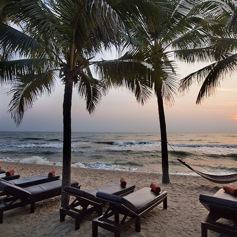 Beach Beachfront Drink Eat Lounge Ocean tree water plant palm Sea arecales Resort Coast tropics caribbean shore lined sandy overlooking