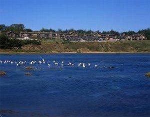 Beach Beachfront Exterior Ocean sky water Nature ecosystem shore Coast Sea inlet Lagoon