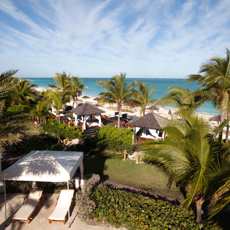 Beach Beachfront Family Grounds Resort tree sky palm Ocean Sea caribbean arecales Coast tropics plant Garden shade lined sandy shore