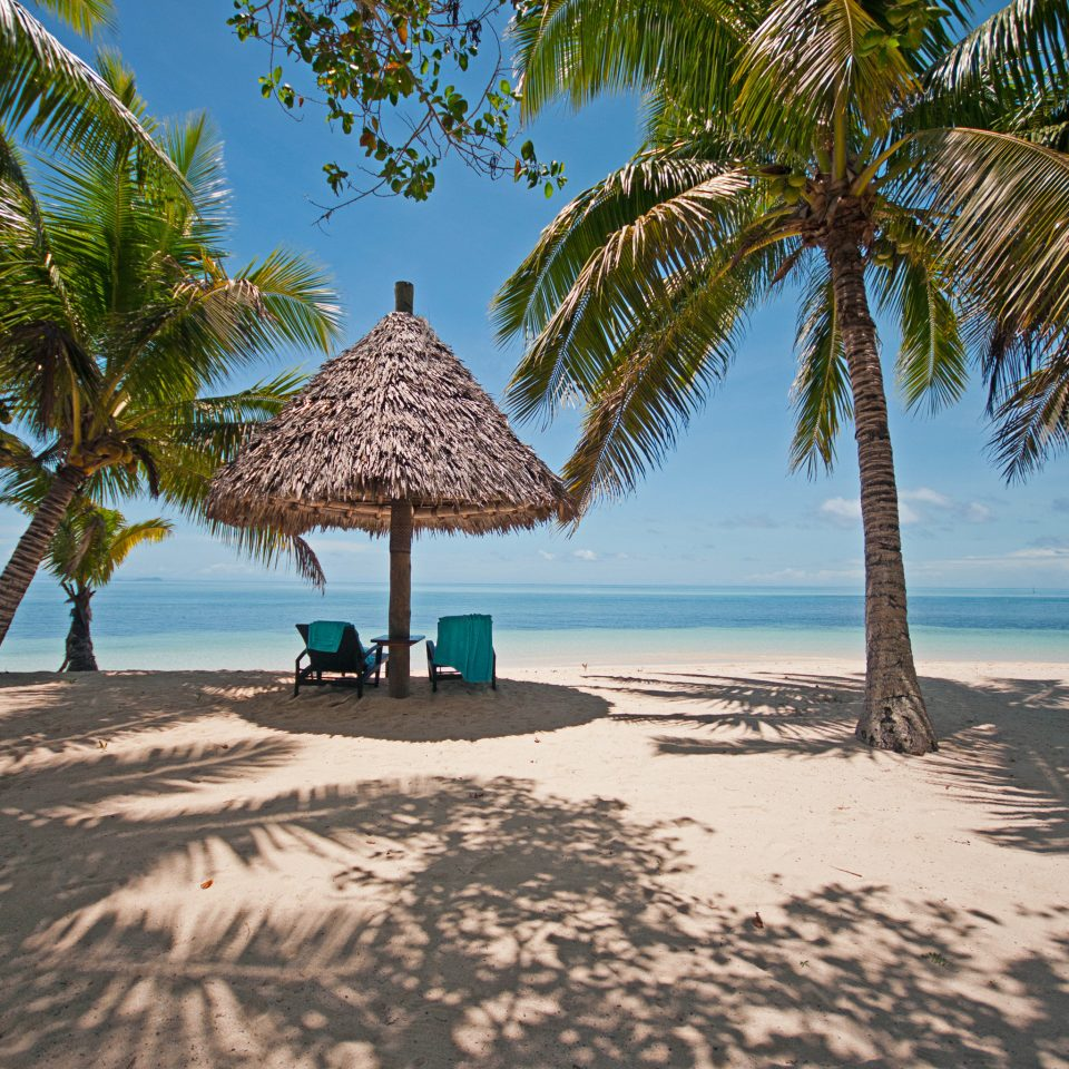 Beach Beachfront Honeymoon Luxury Outdoor Activities Outdoors Romance Scenic views tree palm sky water shore chair Sea caribbean Nature Ocean arecales tropics plant Resort Coast palm family shade Lagoon Island lined cape sand sandy
