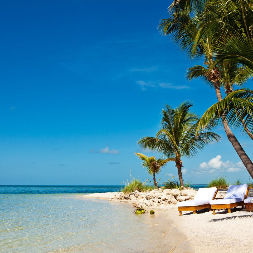 Beach Beachfront Hotels Island Outdoors Resort Romance Romantic Scenic views Secret Getaways Trip Ideas Waterfront sky water tree Sea shore Ocean caribbean Nature Coast tropics palm palm family arecales cape sand Lagoon sandy lined day