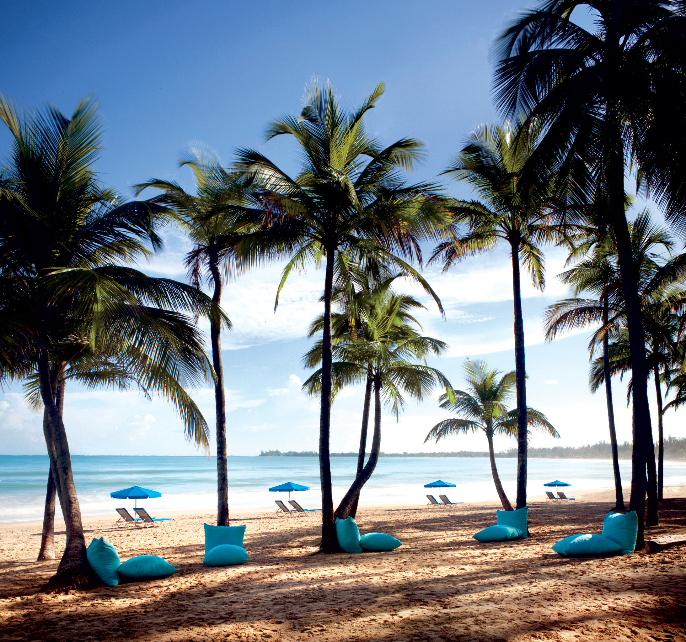 Beach Beachfront Jetsetter Guides Luxury Ocean Play Resort tree palm water sky Sea caribbean shore palm family tropics plant Coast lined arecales woody plant sandy Island Lagoon shade sand line