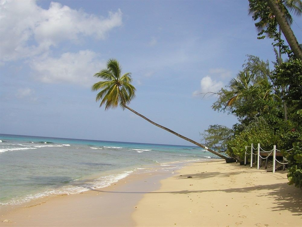 Beach Beachfront Luxury Ocean sky tree water shore Nature caribbean Sea Coast arecales tropics palm Island palm family cape Lagoon sandy