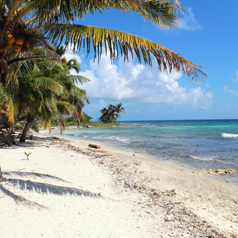 Belize Beaches: Chabil Mar (Belize)