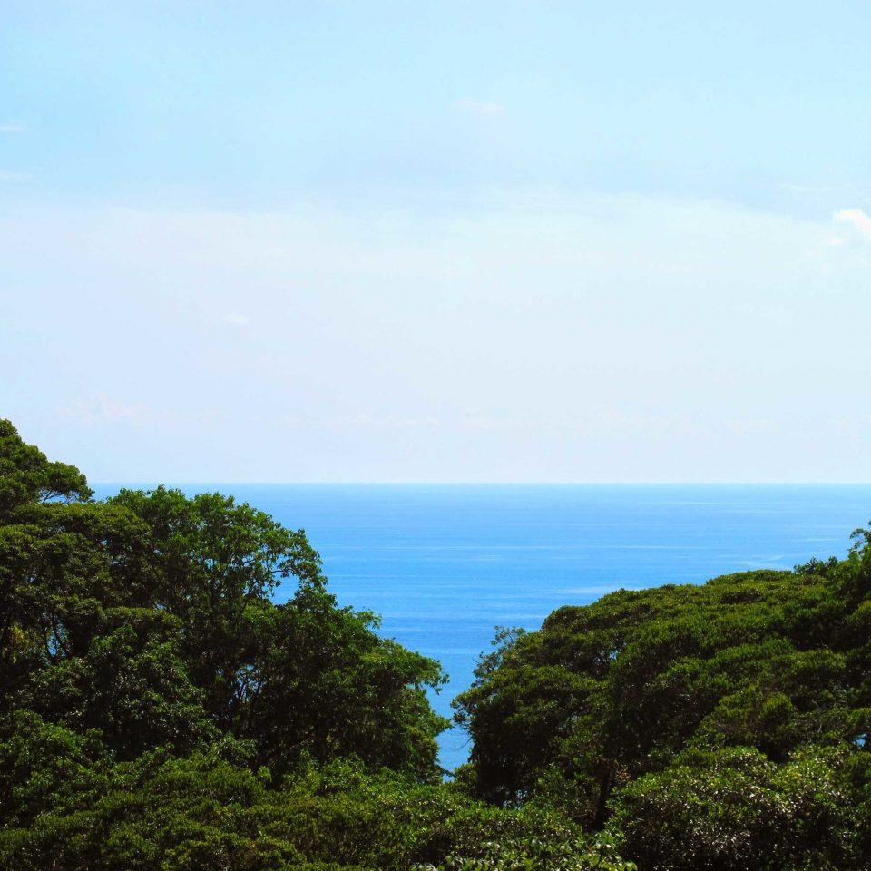 Beach Beachfront Luxury Ocean Tropical tree sky habitat Coast Sea Nature ecosystem horizon hill shore cloud cliff Island mountain terrain tropics cape Jungle hillside lush