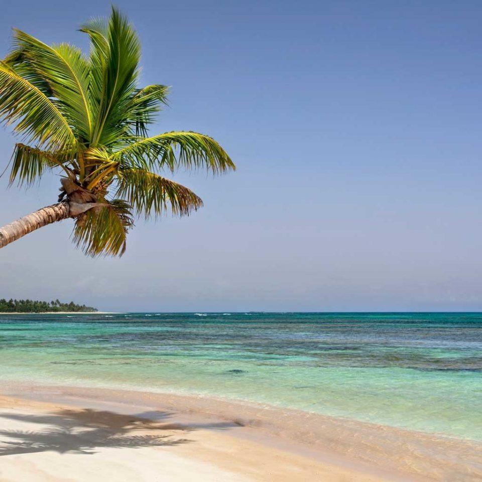 Beach Beachfront Lounge Ocean sky water shore tree caribbean Sea palm Nature Coast horizon palm family arecales tropics Lagoon Island cape islet sandy