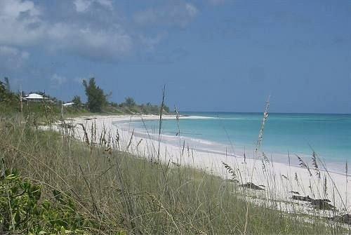 Beach Beachfront Lounge Luxury Ocean grass sky habitat shore Coast Lake Sea reservoir plant land day