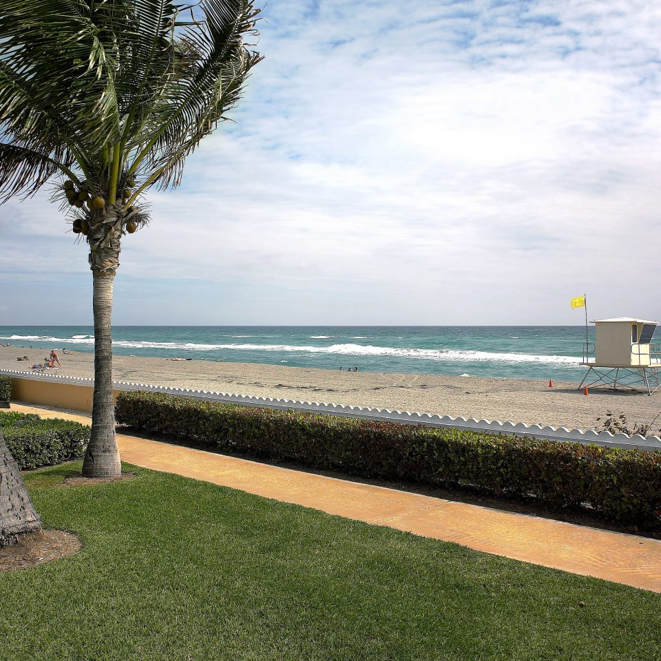 Beach Beachfront Ocean grass sky water shore Sea Coast tree horizon walkway arecales cape caribbean palm plant overlooking