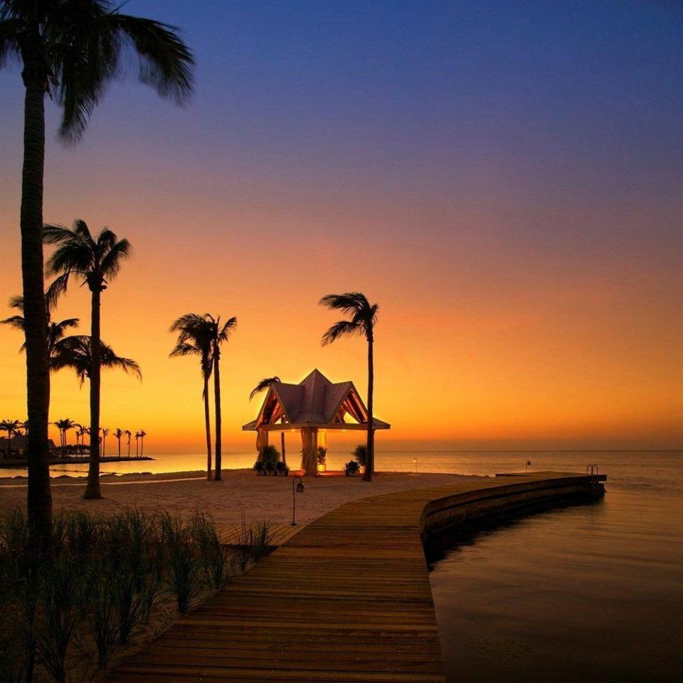 Beach Beachfront Ocean sky water Sunset horizon Sun sunrise Sea dawn dusk morning evening shore Coast arecales sunlight tree sandy