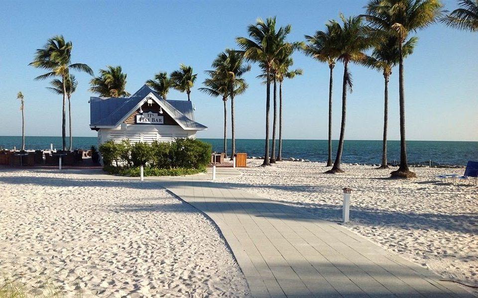 Beach Beachfront Ocean sky tree ground palm walkway shore Sea Resort arecales Coast boardwalk caribbean marina sunny sandy lined day shade