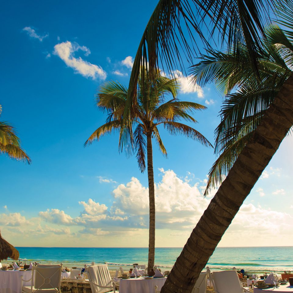 Beach Beachfront Resort Romance Romantic tree sky palm water Ocean caribbean Sea palm family plant tropics arecales Coast shore sandy overlooking shade