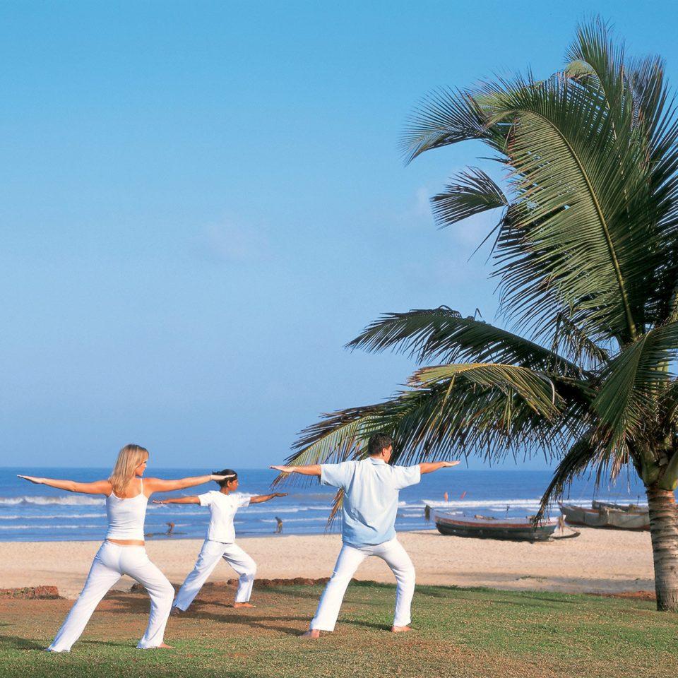 Beach Beachfront Wellness sky tree shore Sea Ocean caribbean arecales Coast palm palm family wind