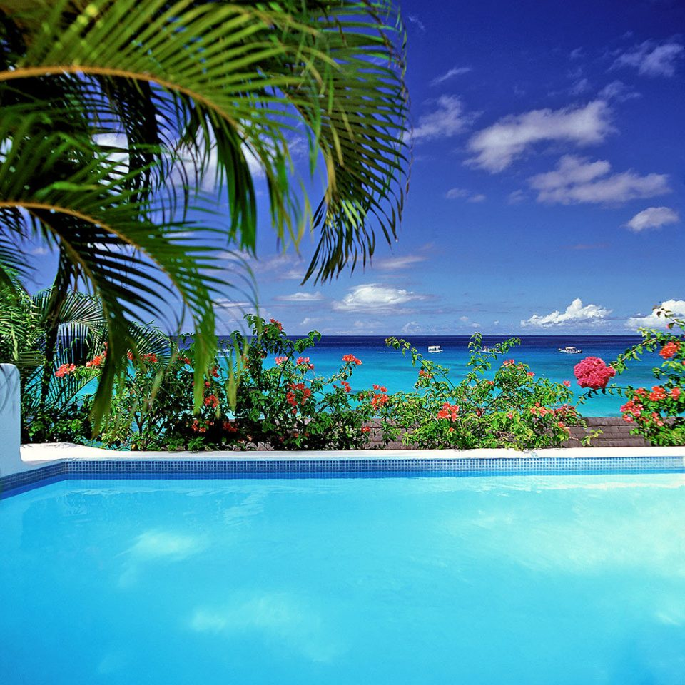 Beach Beachfront Country Cultural Elegant Island Patio Pool Scenic views Trip Ideas Waterfront swimming pool palm caribbean Ocean tropics Sea arecales Resort Lagoon palm family atoll plant colorful