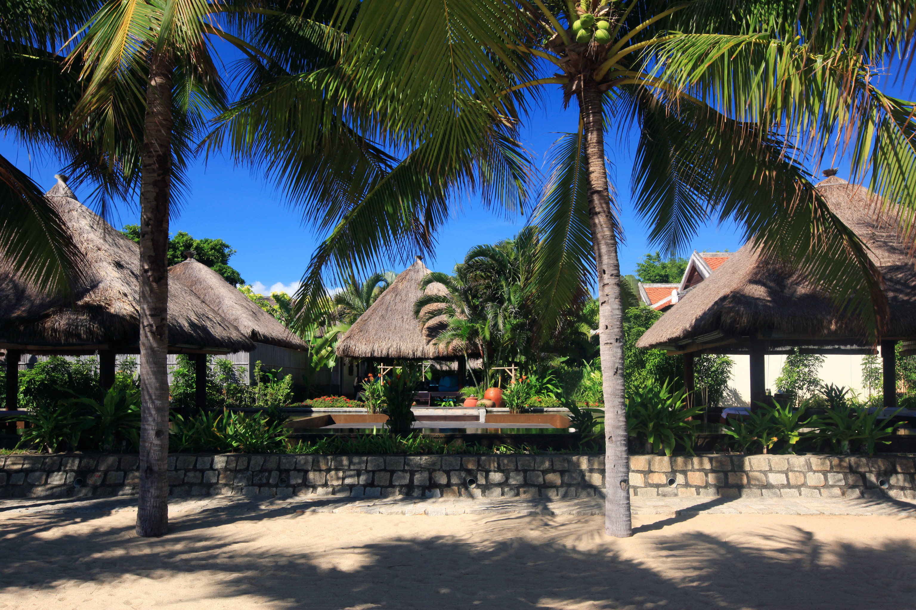 Beach Beachfront Courtyard Family Grounds Jungle Scenic views Spa Tropical Wellness tree ground palm plant Resort arecales tropics caribbean palm family shade hacienda lined sandy