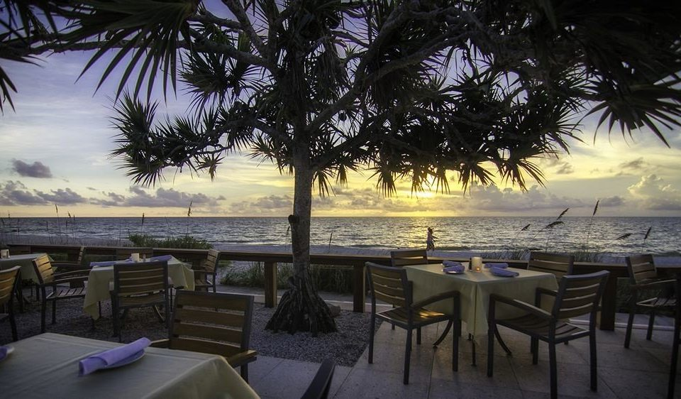 Beachfront Dining Drink Eat Outdoors Tropical Waterfront tree water Resort Beach plant caribbean arecales evening restaurant palm lined shore shade
