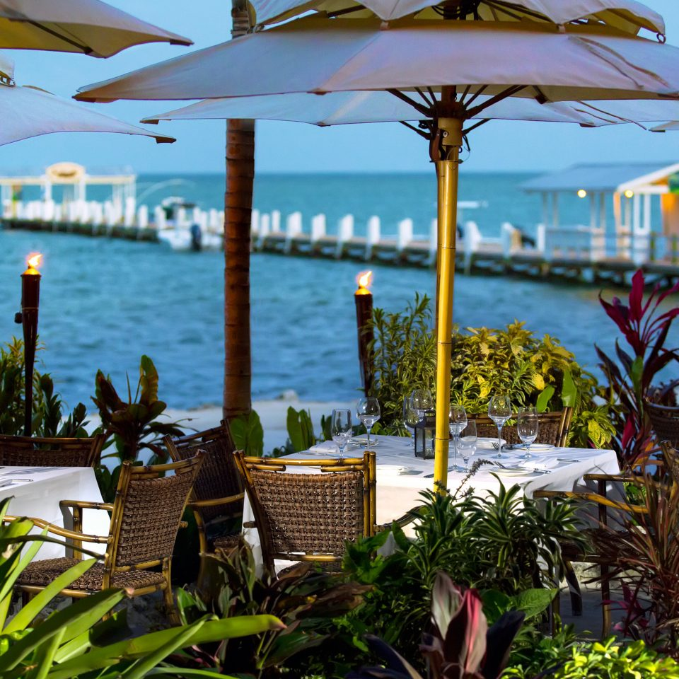 Beachfront Dining Drink Eat Island Lodge Ocean Tropical umbrella water Resort arecales Beach restaurant lawn flower tropics caribbean plant day