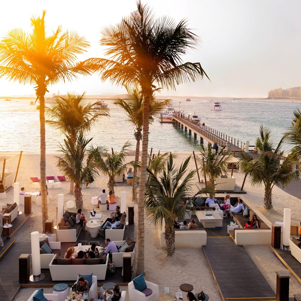 Beach Beachfront Drink Dubai Eat Elegant Hotels Lounge Luxury Luxury Travel Middle East Modern Resort Waterfront sky tree leisure arecales palm plaza plant
