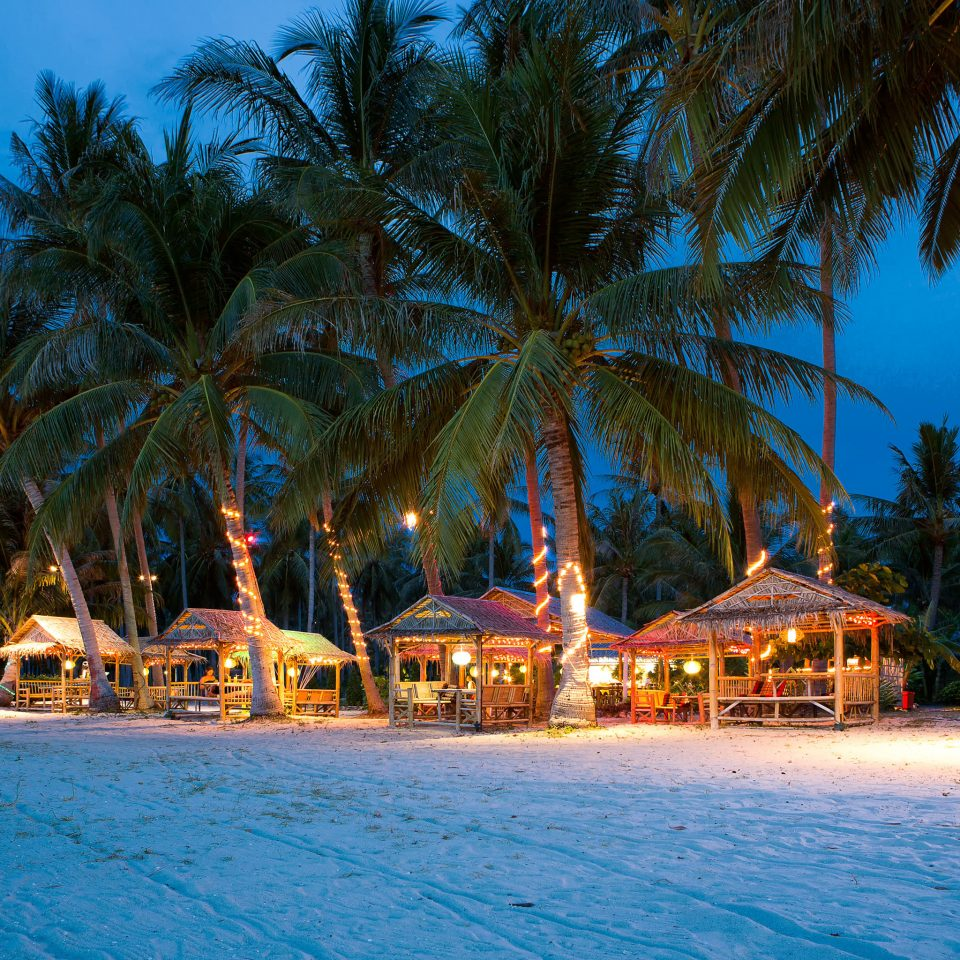 Beach Beachfront Elegant Honeymoon Jungle Lounge Outdoors Romance Romantic Tropical Waterfront tree palm Resort swimming pool arecales caribbean tropics Sea Lagoon Pool Water park plant lined surrounded swimming