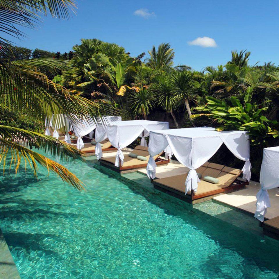 Beachfront Exterior Luxury Modern Patio Penthouse Pool Scenic views Tropical tree sky Resort swimming pool leisure palm caribbean tropics Villa Lagoon Beach Sea arecales plant lined surrounded
