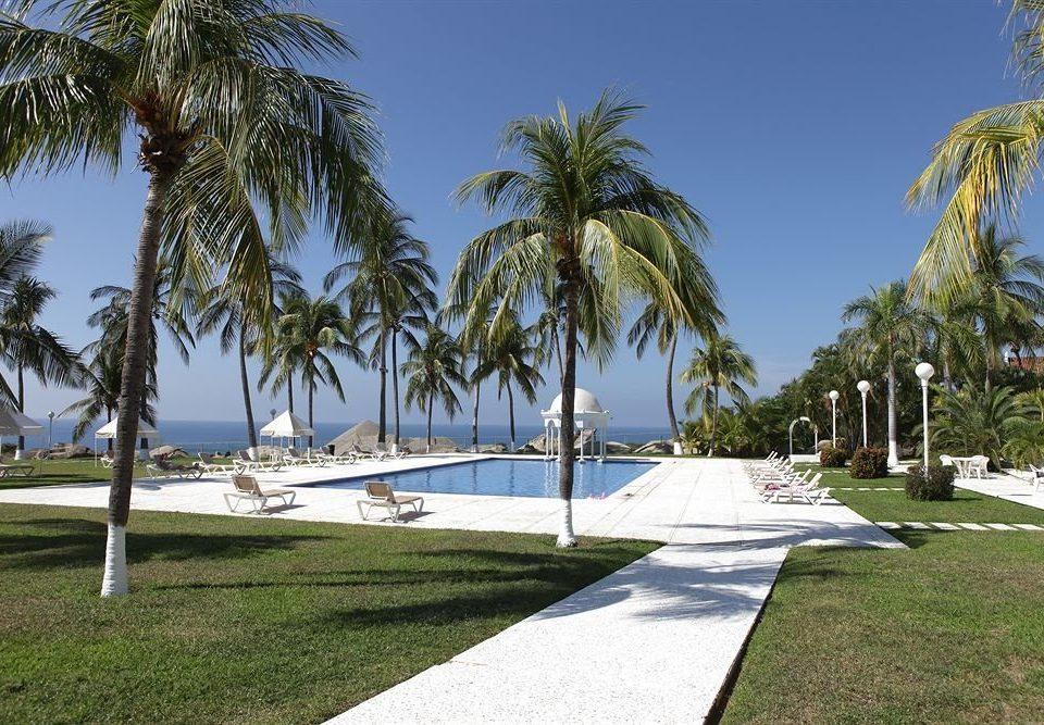 Beachfront Exterior Luxury Modern Pool Tropical grass tree sky palm plant property Beach Resort arecales walkway palm family caribbean swimming pool marina Villa Sea lined